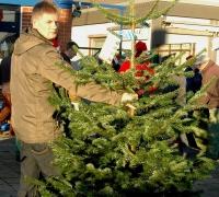 k-Weihnachtsbaumverkauf 0003