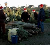 k-Weihnachtsbaumverkauf 0011